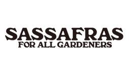 SASSAFRAS/ササフラス